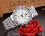 Van de Bedrijfs wijzerplaat van Belbi Eenvoudig Uiterst dun Roestvrij staal voor Unisex-Horloge