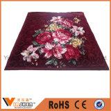 Coperta di corallo molle eccellente del panno morbido della tessile domestica con stampa del fiore