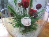 Decorazione conservata di cerimonia nuziale della decorazione della casa della bottiglia di vetro del contenitore di fiore