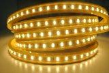 Oro de lujo y tira blanca de la belleza LED