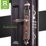 El polvo cubrió el diseño de acero de la puerta de la seguridad del hierro del marco de puerta