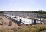 현대 작풍 Prefabricated 강철 구조물 닭장