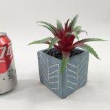 Kunstmatige Purpere Succulente Speciale Decoratie