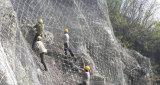 Het Netwerk van de Bescherming van Sns, Flexibiliteit Met hoge weerstand, Hoge, Gemakkelijk Onderhoud, het Actieve Systeem van de Bescherming van de Helling