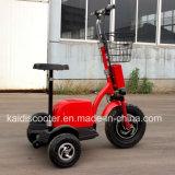 3-wiel Elektrisch Ce van Roadpet van de Gember van het Voertuig van het Sightseeing van de Mobiliteit 500W