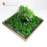 熱い製品の群葉との紫外線保護された縦の壁の庭の芸術