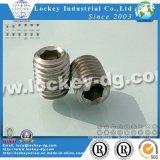 Stahlmade-Schrauben-Einstellschraube DIN915