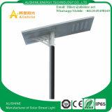 Luz de calle solar del precio competitivo con la lámpara de 100W LED