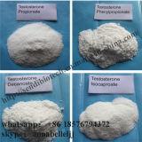 Испытайте тестостерон Cypionate порошка анаболитного стероида Cyp для мышцы Buidling