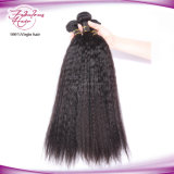 o cabelo 8A humano brasileiro reto Kinky empacota o cabelo reto brasileiro de Yaki