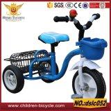 sugli stili superiori di modo e sui tricicli d'acciaio variopinti del bambino
