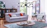 Insieme caldo del sofà di vendita del salone Furntiure