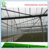 Casa verde de Agricultue del bajo costo de Agrotime