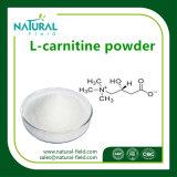 Amincissant l'acétyle L poudre de L-Carnitine de poudre de matière première de la carnitine 99%