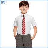 Slim Fit Boys 'Ultimate Non-Iron Short Sleeve Shirts with Stain Away