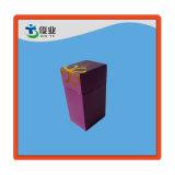 Rectángulo hermoso púrpura del mundo con el rectángulo interno