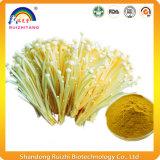 Polvere organica del fungo dell'ago della polvere dell'estratto di Enokitake