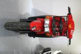 Мотоцикл свинцовокислотной батареи поставки быстро-приготовленное питания электрический