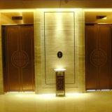 直接工場価格の牽引のタイプMrlのGearless住宅の乗客のエレベーター