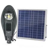 20W réverbère solaire de commande automatique du panneau actionné DEL