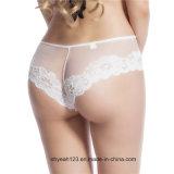 섹시한 여자 Panty 백색 색깔 레이스 숙녀