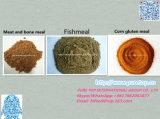 حارّ عمليّة بيع لحظ [بون مل] لأنّ تغذية حيوانيّ طحين سمك بروتين