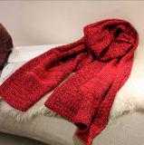 Sjaal van de Dames van de winter de Warme Lange Acryl met Zak