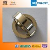 De in het groot Chinese Goedkope N30 Magneet van de Ring van het Neodymium