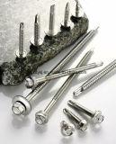 Edelstahl-Schraube und Schraube mit verzinktem oder Dacron für vollständige Verkäufe