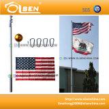 20feet che infila Flagpole per visualizzazione