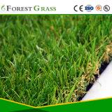 Gesunde und einfache Installation, die Gras landschaftlich verschönert