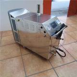 Wld1190 LPG lavadora movible del coche del vapor