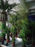 屋外の装飾のための擬似巨大なバンヤンノキ