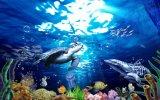 Schöne Hintergrund-Wand glasig-glänzende Fliesen der Kunst-3D (VPA6A580)