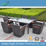 真新しい余暇の庭の家具(Fp0228)