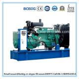 générateur 15kVA diesel actionné par l'engine chinoise de Ricardo