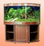 Soem-Acrylfisch-Becken für Verkauf