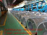 Высокое качество гальванизировало стальную катушку для строительного материала