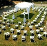 プラスチック樹脂のレストランの十字の背部椅子または喫茶店の椅子か食事の椅子