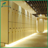 Waterproof 2 Tiers Plain /Woodgrain Color Athletic Phenolic Lockers/HPL Compact Laminate Board
