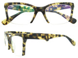 Blocchi per grafici poco costosi del monocolo dei telai dell'ottica di gatto del blocco per grafici all'ingrosso dell'occhio