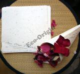 Врезанная семенем Plantable бумага принтера