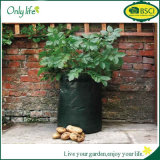 Картошка гибкого PE Onlylife Vegetable растет мешки засаживая плантаторов баков сада мешка