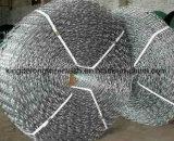 Engranzamento de aço galvanizado do reforço da alvenaria de /Stainless