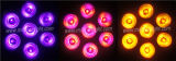 7*15W Rgbaw+UV 6 in 1 LED-wasserdichtem NENNWERT Licht