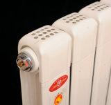 Radiador de alumínio central da água térmica fixada na parede