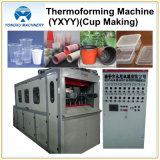 Cup Making Machine Thermoforming Machine (YXYY660)를 위한 플라스틱 Forming