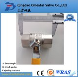 Clapet à gaz en laiton assurément de qualité (un service d'arrêt)