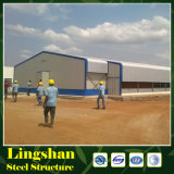 Design Layer Chicken House for Tanzania Poultry Farm