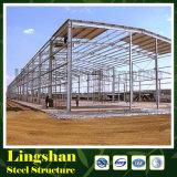 ISOの軽いプレハブの鉄骨構造の建物(LS-SS-524)